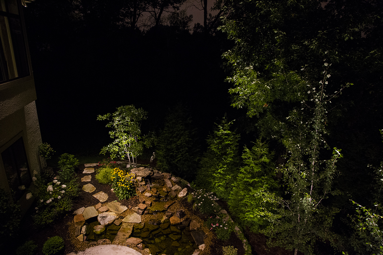 garden with trees and flowers at nighttime with light